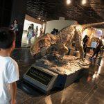 恐竜博物館☆in福井県