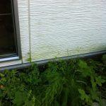 外壁の汚れを高圧洗浄で・・・