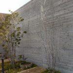 杉板のRC壁